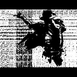 Colorisation Automatique (Exemple 1)