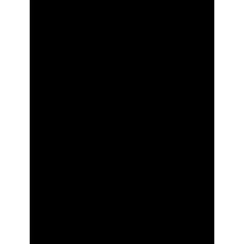 Colorisation Automatique (Exemple 3)
