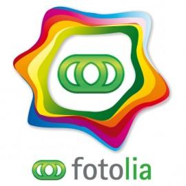 Module Fotolia Business API